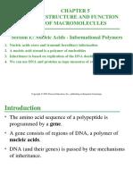 05E-NucleicAcids