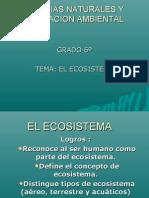 DIAPOSITIVAS ECOSISTEMA