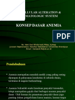 Anemia NEW