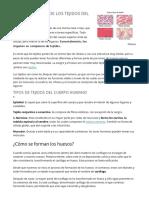 CARACTERÍSTICAS DE LOS TEJIDOS DEL CUERPO HUMANO.docx
