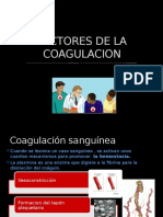 Factores de La Coagulacion 1