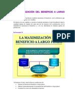 max lp.pdf