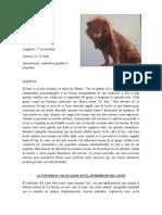 Leon Felinario Parqueleyendas