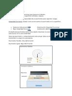 Resumen PEP 3 VIAL.docx