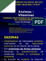 enzimas y vitaminas.pptx