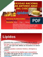 Lipidos.pptx