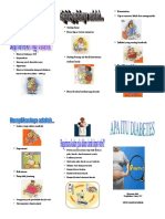 Leaflet Diabetes Melitus 2