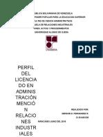 PERFIL DEL LICENCIADO.docx