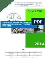 Programa Seguridad Salud y Medio Ambiente Rev 01