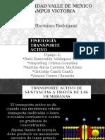 5.3_Transporte_Activo.pptx