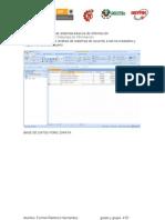 Base de Datos Ford Zapata