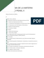 Programa de La Materia Derecho Penal II