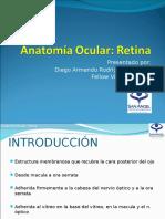 Anatomía de La Retina (DIEGO)