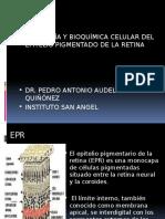 8.2 Fisiología y Bioquímica Celular Del EPR (PEDRO)