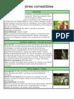 Plantas silvestres comestibles.docx