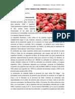 6-Guía de Pimiento 2016 (1)