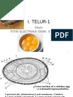 I Telur Handout