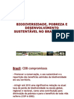 Apresentação COP8 - v II[Autor]