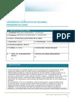 03 Formato Programa Promoción y Prevencion de La Salud