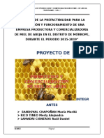proyecto de innversion.p.docx