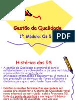 Gestão Da Qualidade - 5S