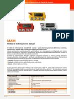 MAM+MCP+-+Entrada+DS