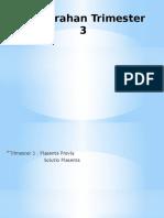 perdarahan trimester 3.pptx