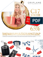 Sales Flyer C17