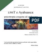 DMT e Ayahuasca