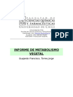 INFORME DE METABOLISMO VEGETAL