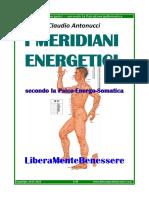 I Meridiani Energetici Secondo La PES
