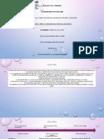 Psicología del desarrollo-Presentación línea de ciclo vital