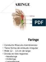 EXPO FARINGE - OTORRINO.pptx