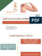 Articulación Hombroarticulaciones