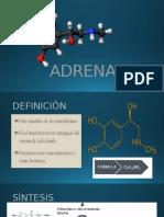 Adrenalin A