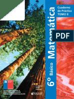 Cuadernillo 2 Matemáticas 6 básico