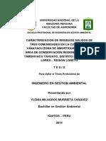 Tesis Para Libro Ylenia m. Murrieta Vásquez