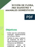 Proteccion de Flora y Fauna Silvestre y Animales