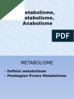 metabolisme,katabolisme,anabolisme.pptx