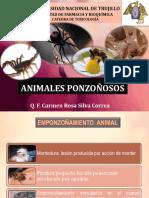 ANIMALES PONZOÑOSOS (1).pdf