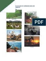 Actividades en Las Que Se Aprovechan Los Recursos Naturales (2)