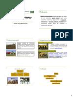 Aula 2 Tratores Agrícolas.pdf