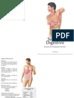 Terapeutas Rurales - Sistema Digestivo