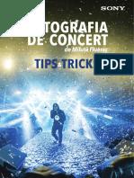 Fotografia de concert.pdf