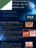 Malformaciones Congénitas de La Cavidad Oral