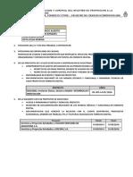 Pedido de Informacion-baal Sa-Auditoria Tecnica