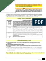 Lectura - Identificación de Peligros y Evaluación de Riesgos