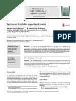 Carcinoma de células pequeñas de mama.pdf