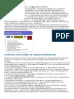 Características básicas de la organización formal.docx