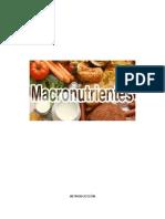 BIOMOLÉCULAS Carbohidratos Completo